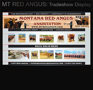 MT Red Angus